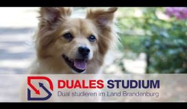 Duales Studium in Brandenburg